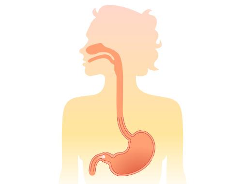 オゾン水のオゾン濃度を保ったまま胃まで届くのか問題